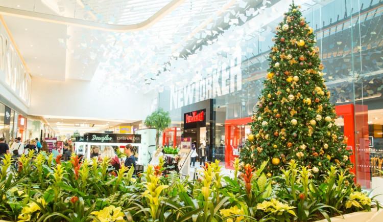 Vánoce v obchodním centru: Noční nákupy, koledy, charita i netradiční akce