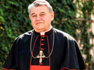 Kardinál Duka na zahradě Arcibiskupského paláce v Praze