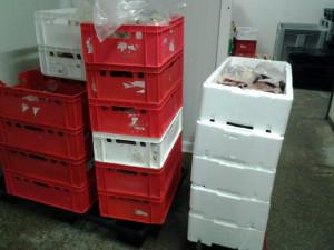 Více než půl tuna prošlých potravin ve skladu na Kladensku.