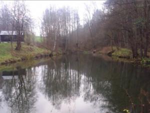 Obce vybudují nové rybníky. Stát jim přispěje stovky milionů