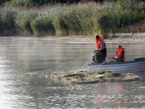 Lipno, největší přehradní nádrž vČeské republice, od přítoku až khrázi celý tento týden brázdí výzkumné lodě.