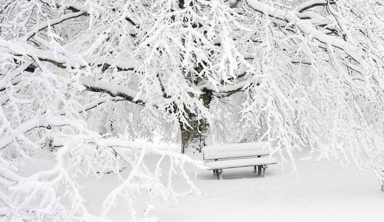 V ČR bude v sobotu sněžit, někde bude i ledovka a velký mráz