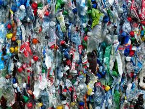 Zálohování PET lahví nezvýší jejich sběr. Podle analýzy může mít dokonce opačný vliv