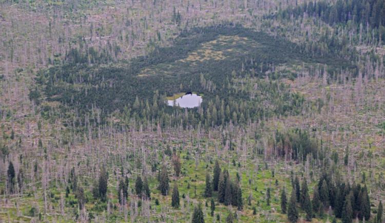 FOTO: Žaloba kraje na národní park a ministerstvo? Akt zoufalství, nikoliv útoku, říká hejtmanka
