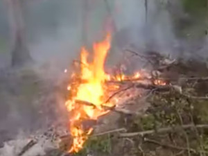 VIDEO: Na Sibiři hasiči dál bojují s plameny, většinu však nechávají být