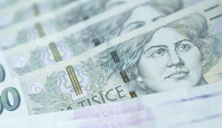 Stát dá příští rok neziskovkám dotace 5,68 miliardy korun, rozhodla vláda