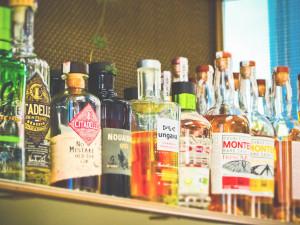 Ministr: Reklama na alkohol by neměla zobrazovat živé bytosti