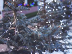 Pokuta ČOI Alze za prodej o svátcích platí, rozhodl soud