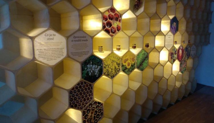 FOTO: Cenu Patria Nostra získal ve Středočeském kraji Včelí svět v Hulicích
