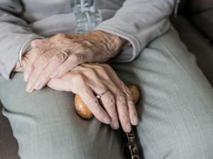 Senioři vyzvali vrstevníky, aby bonus k penzi poslali na vzdělání