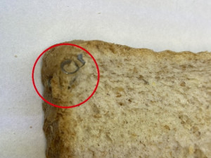 Inspektoři našli v toustovém chlebu z Polska kovové střepiny