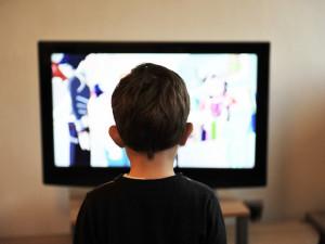 Sledovanost televizí byla loni nejvyšší za 24 let měření