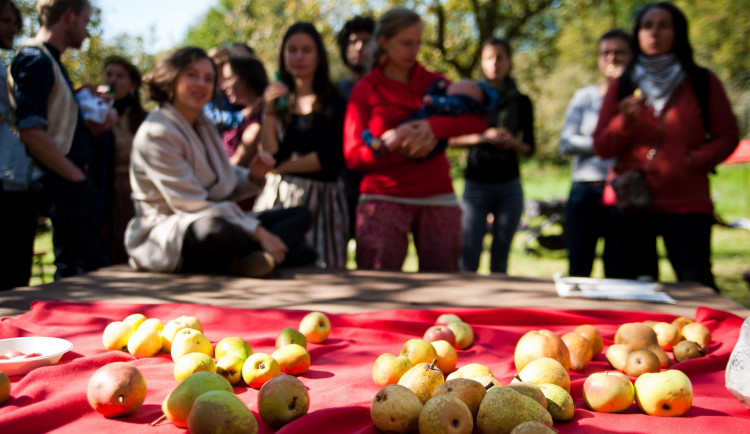 Rozkvetlou třešeň na prvomájový polibek najdete s mapou Na ovoce